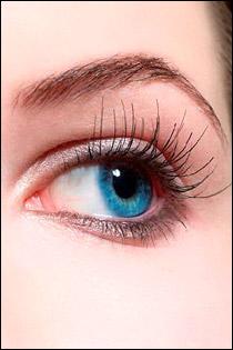 دراسة حول عيون زرقاء والخضراء b051015150948.jpg