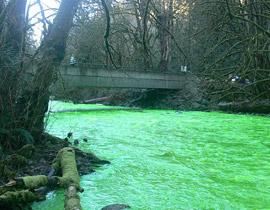 صورة رقم 1 - في مشهد مذهل.. مياه نهر اصطبغت باللون الأخضر!!