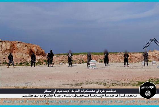 صورة رقم 4 - بالصور.. مجاهدو غزة يتدربون في معسكرات