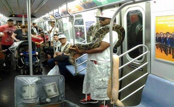 صورة رقم 1 - صور غريبة: تصرفات ركاب المواصلات العامة لم تكن تتوقعها!