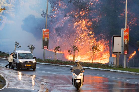 صورة رقم 3 - عجز اسرائيل في مواجهة الحرائق حجب ثقة عن نتنياهو الذي يؤثر النباح على العرب
