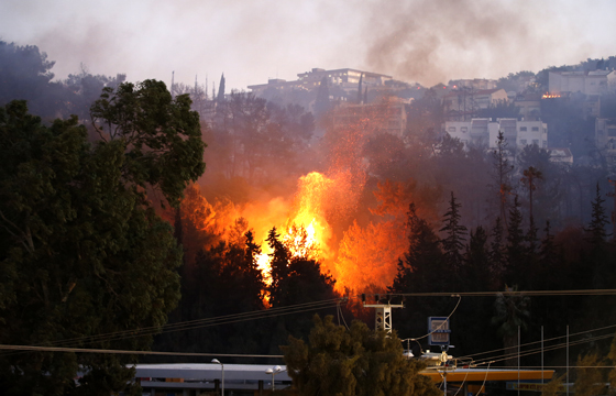صورة رقم 5 - عجز اسرائيل في مواجهة الحرائق حجب ثقة عن نتنياهو الذي يؤثر النباح على العرب