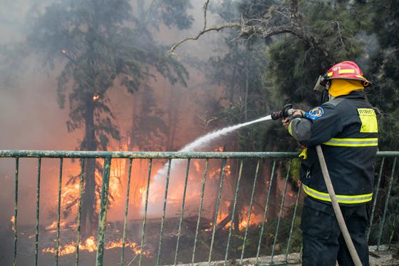 صورة رقم 11 - عجز اسرائيل في مواجهة الحرائق حجب ثقة عن نتنياهو الذي يؤثر النباح على العرب