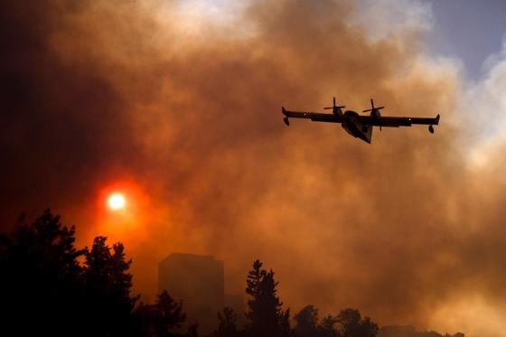 صورة رقم 1 - عجز اسرائيل في مواجهة الحرائق حجب ثقة عن نتنياهو الذي يؤثر النباح على العرب