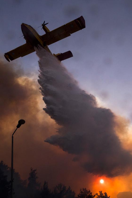صورة رقم 13 - عجز اسرائيل في مواجهة الحرائق حجب ثقة عن نتنياهو الذي يؤثر النباح على العرب