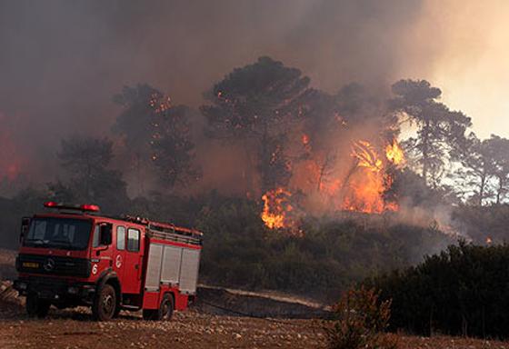 صورة رقم 15 - عجز اسرائيل في مواجهة الحرائق حجب ثقة عن نتنياهو الذي يؤثر النباح على العرب