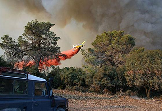 صورة رقم 23 - عجز اسرائيل في مواجهة الحرائق حجب ثقة عن نتنياهو الذي يؤثر النباح على العرب