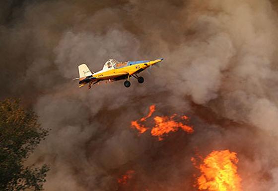 صورة رقم 24 - عجز اسرائيل في مواجهة الحرائق حجب ثقة عن نتنياهو الذي يؤثر النباح على العرب