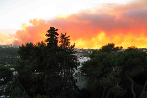 صورة رقم 29 - عجز اسرائيل في مواجهة الحرائق حجب ثقة عن نتنياهو الذي يؤثر النباح على العرب