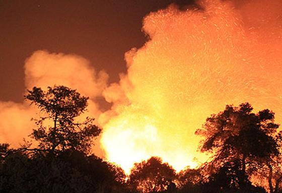 صورة رقم 30 - عجز اسرائيل في مواجهة الحرائق حجب ثقة عن نتنياهو الذي يؤثر النباح على العرب