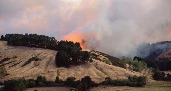 حرائق غابات ضخمة في نيوزيلندا تتسبب بنزوح الآلاف عن بيوتهم صورة رقم 3