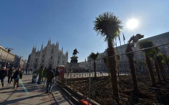 اشجار نخيل في محيط كاتدرائية ميلانو تثير جدلا في ايطاليا صورة رقم 5