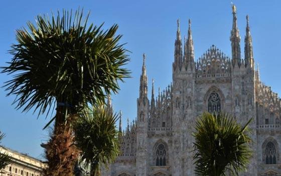 اشجار نخيل في محيط كاتدرائية ميلانو تثير جدلا في ايطاليا صورة رقم 6