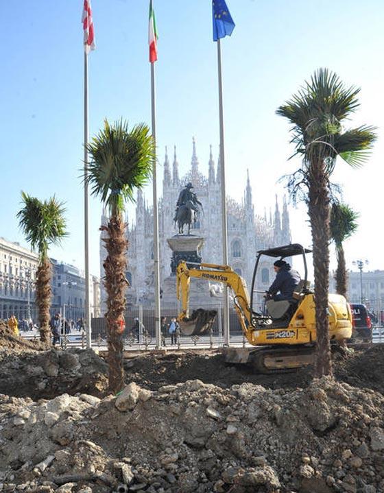 اشجار نخيل في محيط كاتدرائية ميلانو تثير جدلا في ايطاليا صورة رقم 1