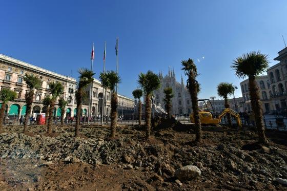 اشجار نخيل في محيط كاتدرائية ميلانو تثير جدلا في ايطاليا صورة رقم 2