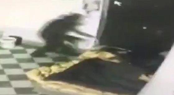صورة رقم 2 -  فيديو صادم: عامل محطة وقود يرش البنزين على عشيق زوجته  ويحرقه!