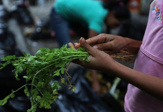 صورة رقم 13 - فنزويلا من أغنى الدول بالنفط وشعبها يأكل من القمامة