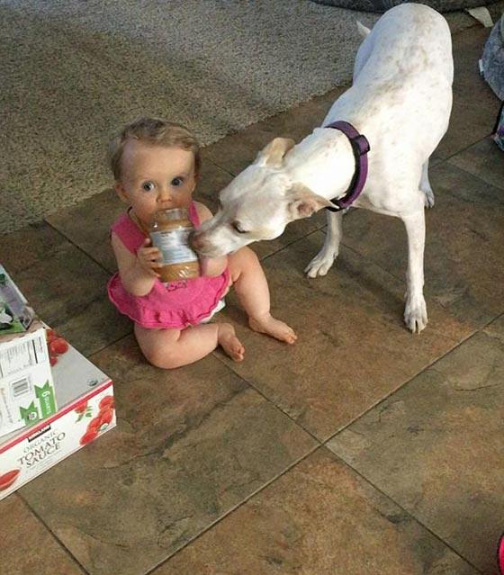 فيديو طريف.. رضيعة تتشارك مع كلبها وجبة زبدة الفول السوداني صورة رقم 3