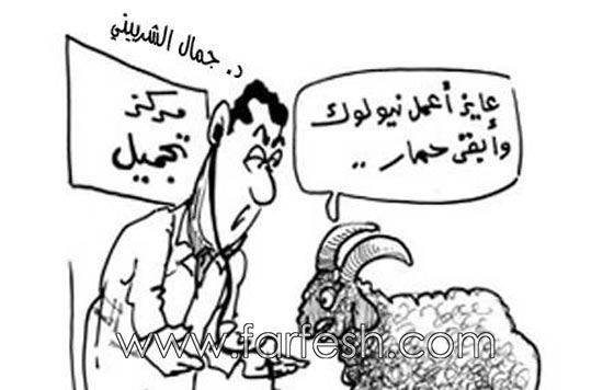 صورة رقم 2 - صور مضحكة: 32 كاريكاتير خروف العيد، وكل عام وأنتم بخير..