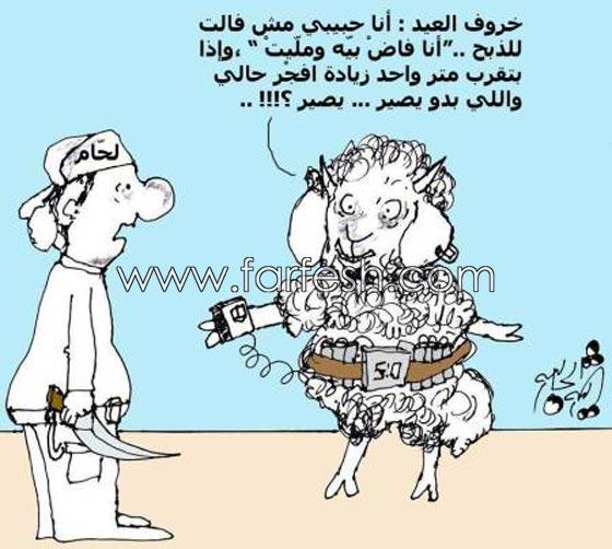 صورة رقم 1 - صور مضحكة: 32 كاريكاتير خروف العيد، وكل عام وأنتم بخير..