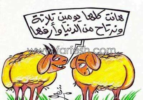 صورة رقم 24 - صور مضحكة: 32 كاريكاتير خروف العيد، وكل عام وأنتم بخير..