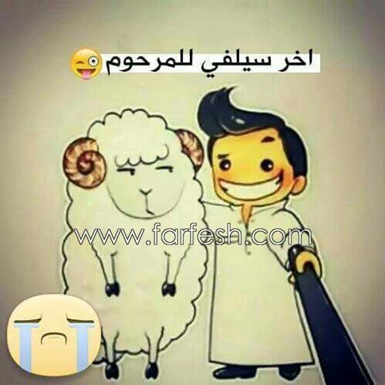 صورة رقم 5 - صور مضحكة: 32 كاريكاتير خروف العيد، وكل عام وأنتم بخير..