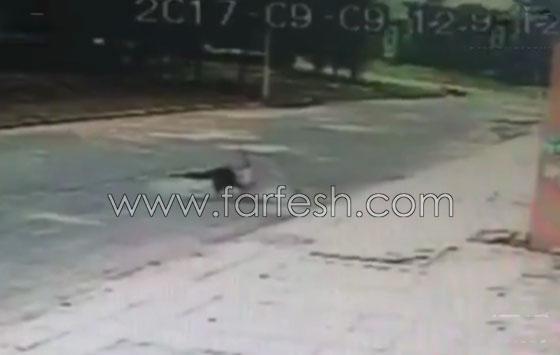 فيديو مروع.. لحظة سقوط رجل من الطابق السادس وارتطامه بالأرض صورة رقم 4