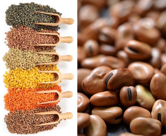 العسل والأرز والشوكولاتة والخل اغذية لا تفسد حتى نهاية العالم صورة رقم 2