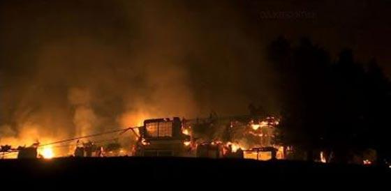 حرائق الغابات تقتل 17 شخصا وتدمر 1500 مبنى في كاليفورنيا! فيديو صورة رقم 1