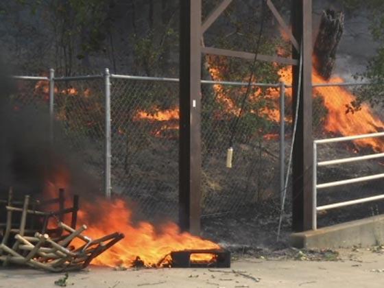 حرائق الغابات تقتل 17 شخصا وتدمر 1500 مبنى في كاليفورنيا! فيديو صورة رقم 4