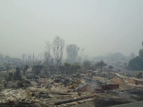 حرائق الغابات تقتل 17 شخصا وتدمر 1500 مبنى في كاليفورنيا! فيديو صورة رقم 5
