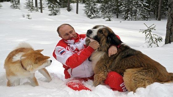 من الكلاب والخيل وحتى الوحوش والزواحف.. هذه هي حيوانات بوتين صورة رقم 4