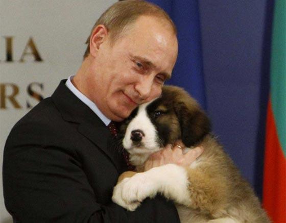 من الكلاب والخيل وحتى الوحوش والزواحف.. هذه هي حيوانات بوتين صورة رقم 2