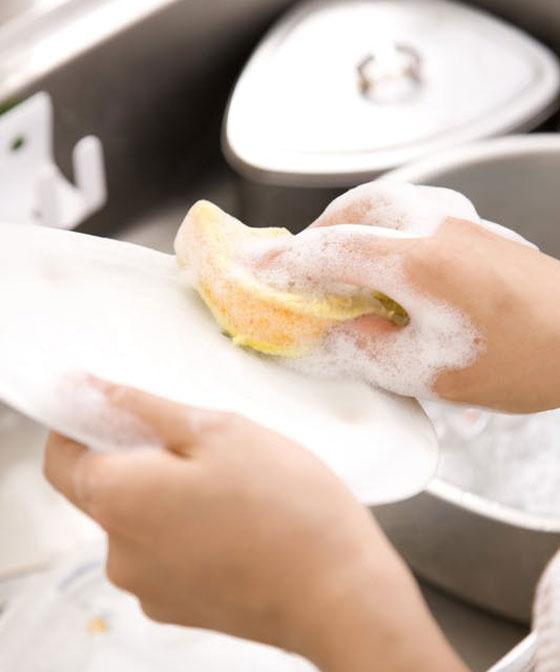 صورة رقم 5 - احذروا.. إسفنجة غسل الصحون تحتوي على بكتيريا أكثر مما على المرحاض!