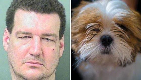 10 أحكام قضائية غريبة ضد حيوانات:محاكمة ببغاء يتحرش بالسيدات وديك ملحد! صورة رقم 3