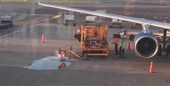 يالفيديو والصور.. تسرب وقود على أرض مطار بسبب انشغال عاملين صورة رقم 4