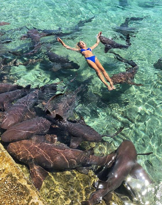 سمكة قرش تعض عارضة الأزياء كاترينا بيدها خلال التقاطها الصور صورة رقم 3