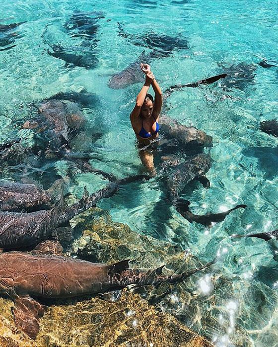 سمكة قرش تعض عارضة الأزياء كاترينا بيدها خلال التقاطها الصور صورة رقم 6