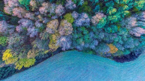 صور مدهشة.. هكذا يبدو العالم من الجو بعدسة الطائرات بدون طيار.. صورة رقم 10