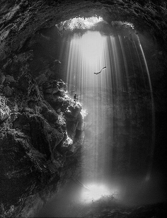 أشهر وأجمل الصور الفائزة بمسابقة التصوير تحت سطح الماء صورة رقم 4