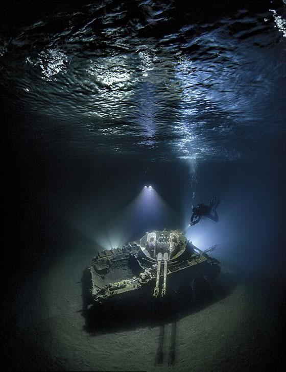 أشهر وأجمل الصور الفائزة بمسابقة التصوير تحت سطح الماء صورة رقم 5