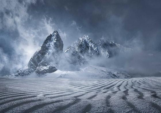 أبرز وأقوى الصور المشاركة في مسابقة سميثسونيان للتصوير صورة رقم 9