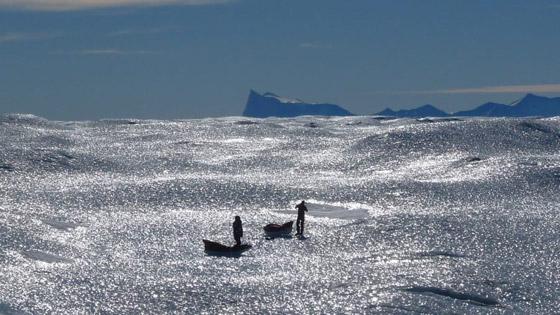 صور مدهشة لبعثات القارة القطبية الجنوبية من الماضي والحاضر صورة رقم 22