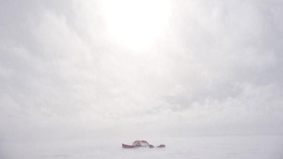 صور مدهشة لبعثات القارة القطبية الجنوبية من الماضي والحاضر صورة رقم 23