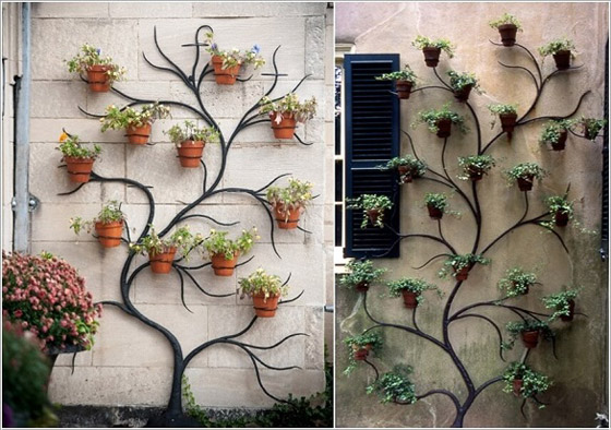 صورة رقم 1 -  أفكار مدهشة لتزيين جدران المنزل الخارجية بالنباتات