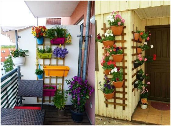 صورة رقم 2 -  أفكار مدهشة لتزيين جدران المنزل الخارجية بالنباتات