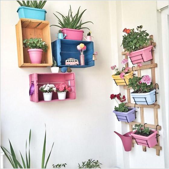 صورة رقم 4 -  أفكار مدهشة لتزيين جدران المنزل الخارجية بالنباتات