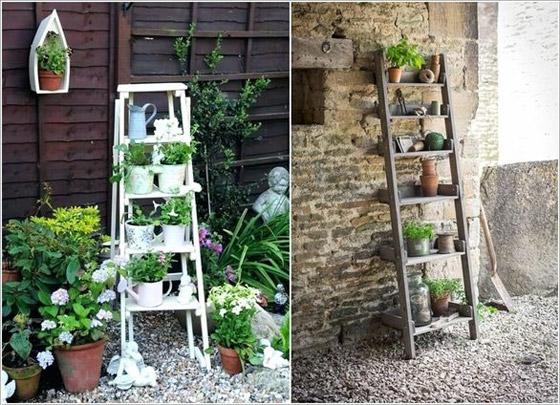 صورة رقم 7 -  أفكار مدهشة لتزيين جدران المنزل الخارجية بالنباتات