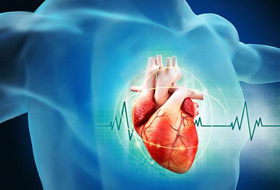 صورة رقم 6 - مجموعة نصائح للوقاية من أمراض القلب