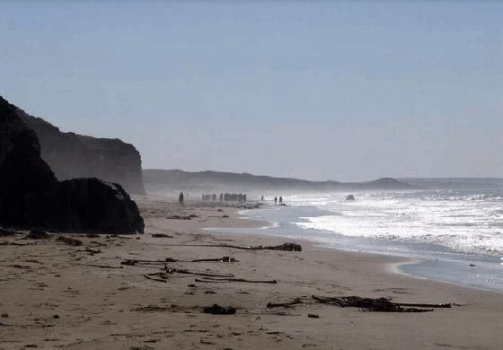 جزيرة بوفيجليا: الجزيرة الأكثر رعبا بالعالم مليئة بالجثث وتربتها رماد بشري! صورة رقم 2